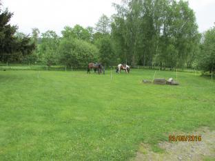 Svezení na koních